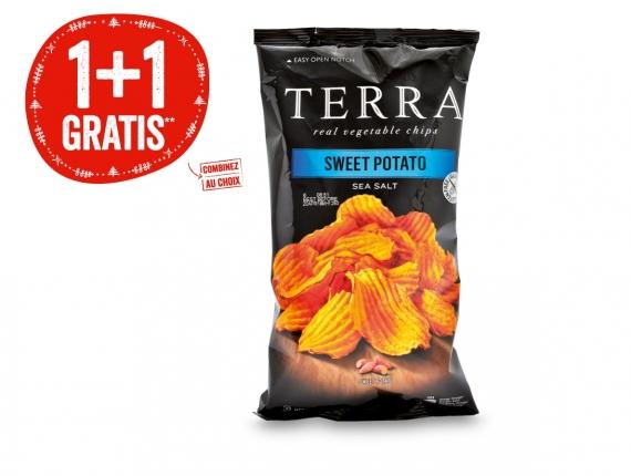 Chips Terra
