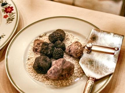 Risotto aux truffes et au parmesan