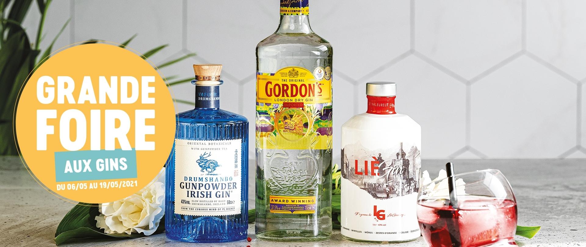 Grande Foire aux gins